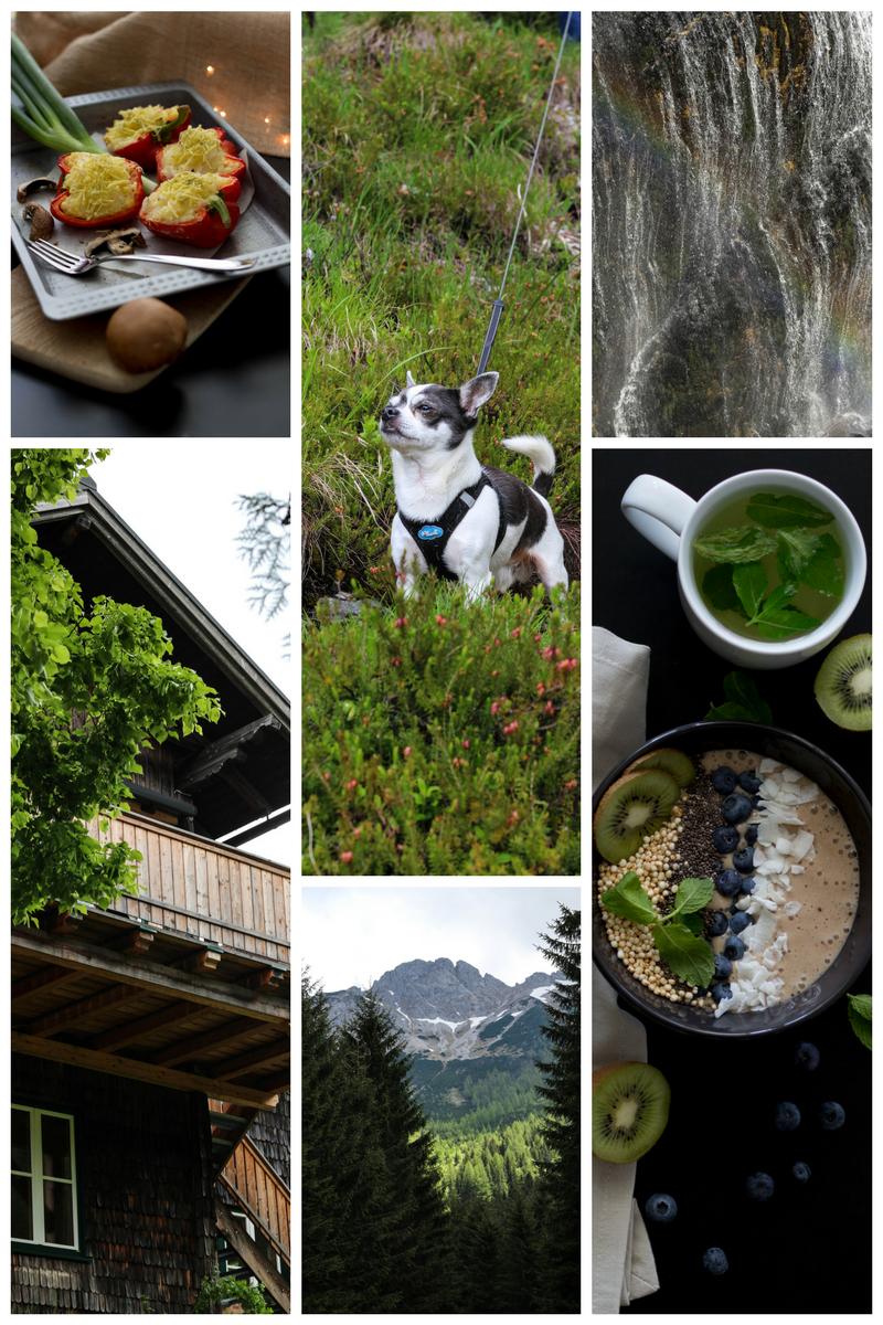 Kontakt, Dein Homespa, Kooperation, Portfolio, Vegan, Blog, Nature, Fotografie, Kochen, Lifestyle, Mostviertel, Austria, Österreich