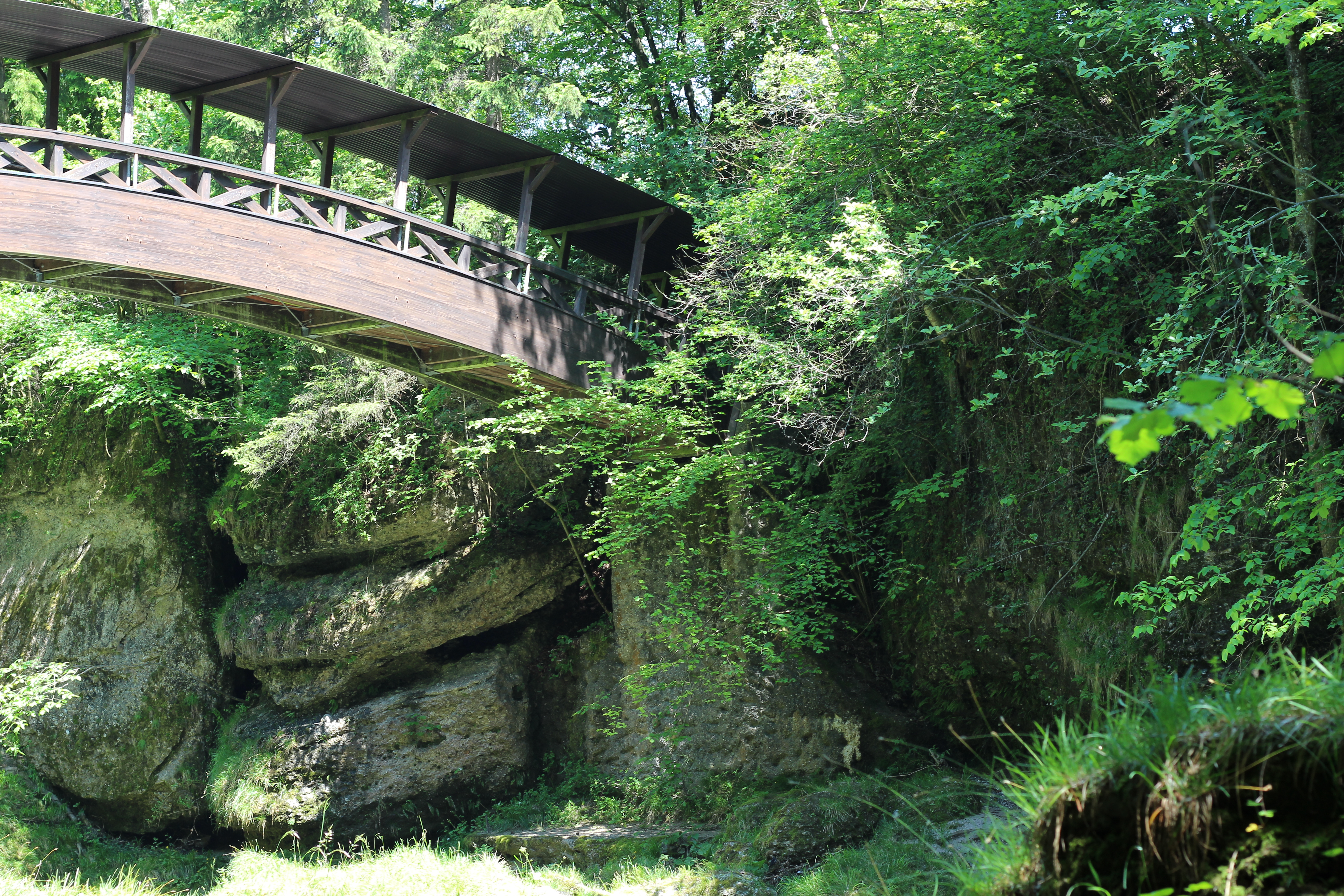 Romantikbrücke erlaufschlucht (31)