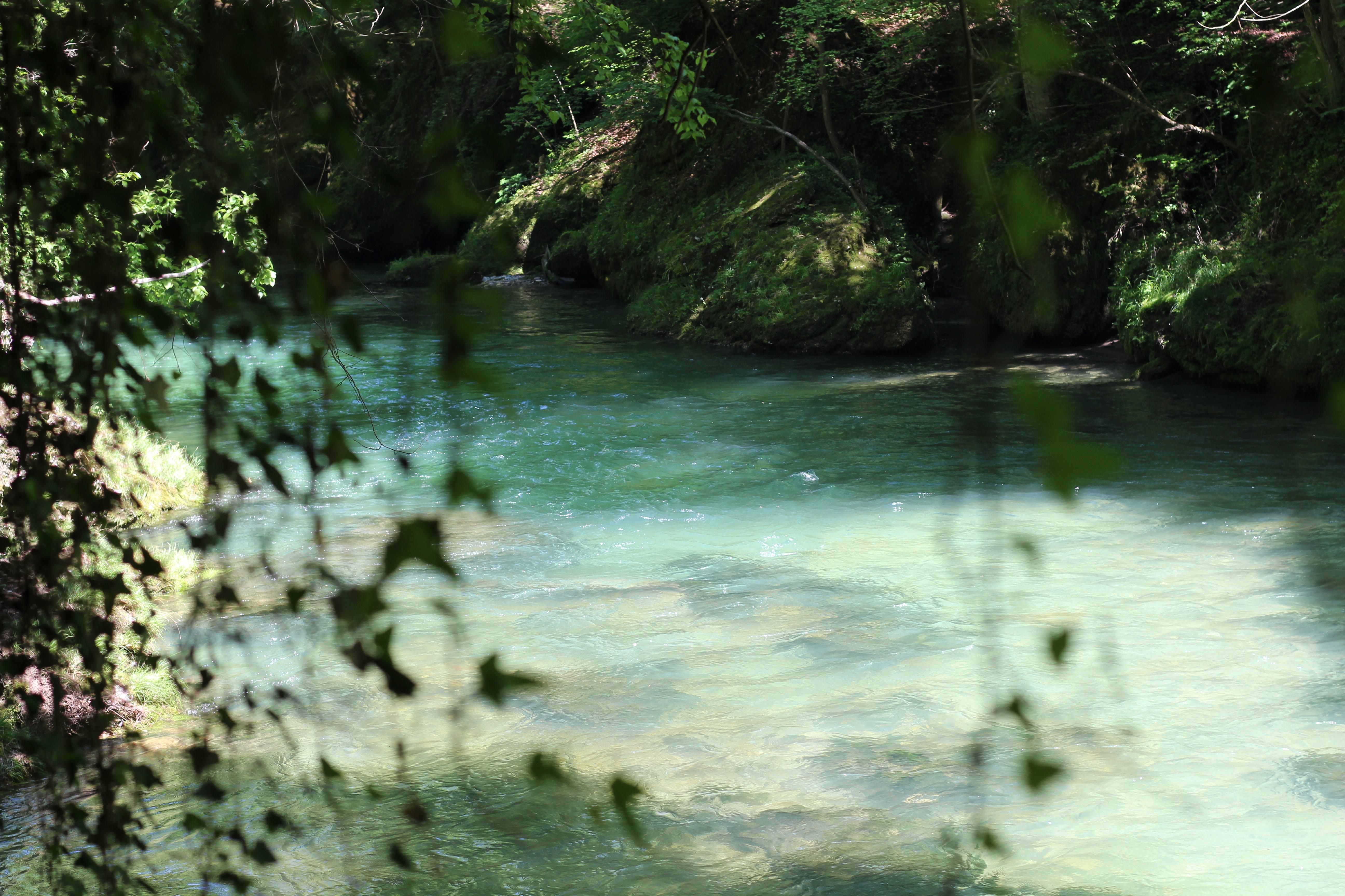 Wasser erlaufschlucht (20)
