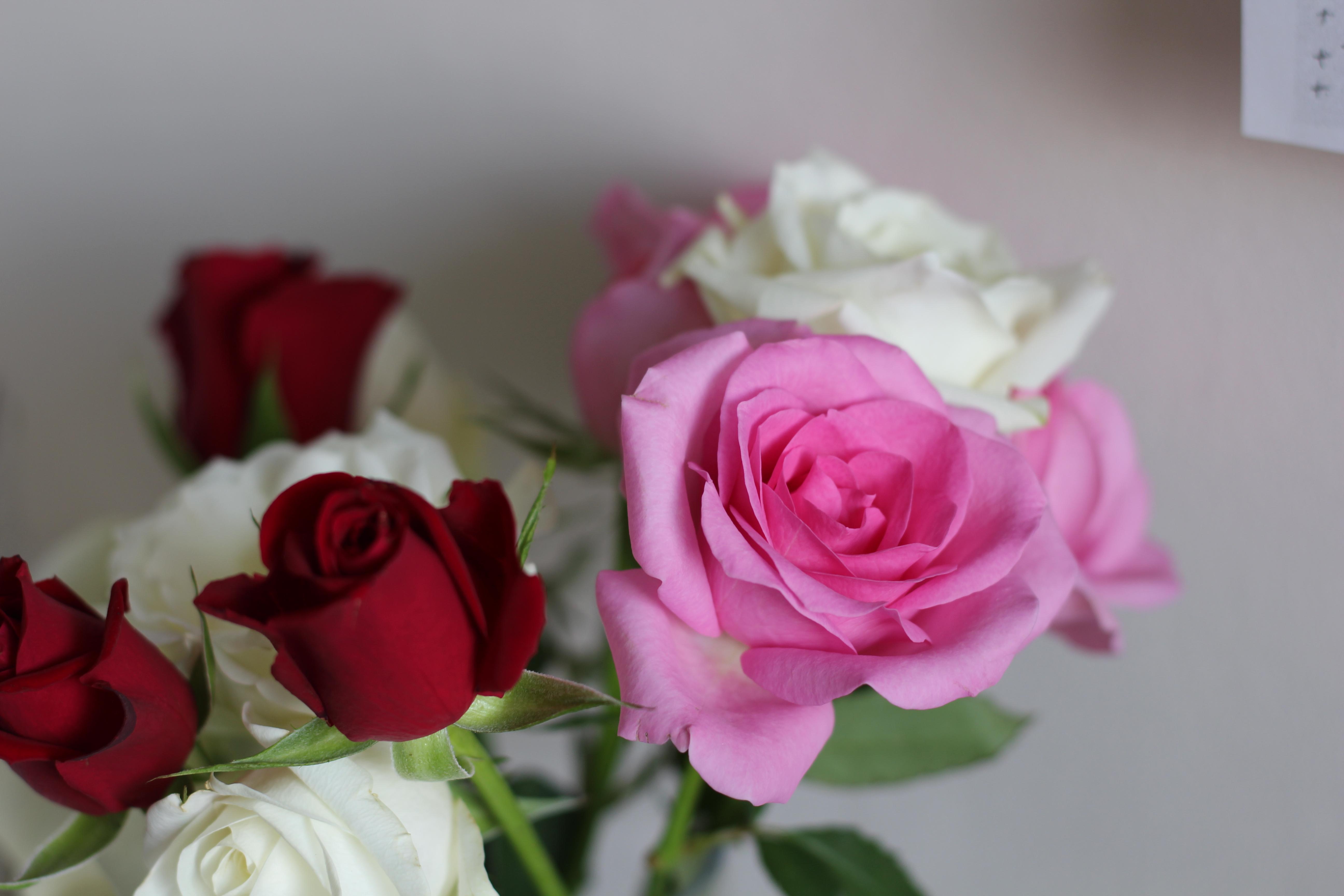 Dein HomeSpa Office Frische Blumen