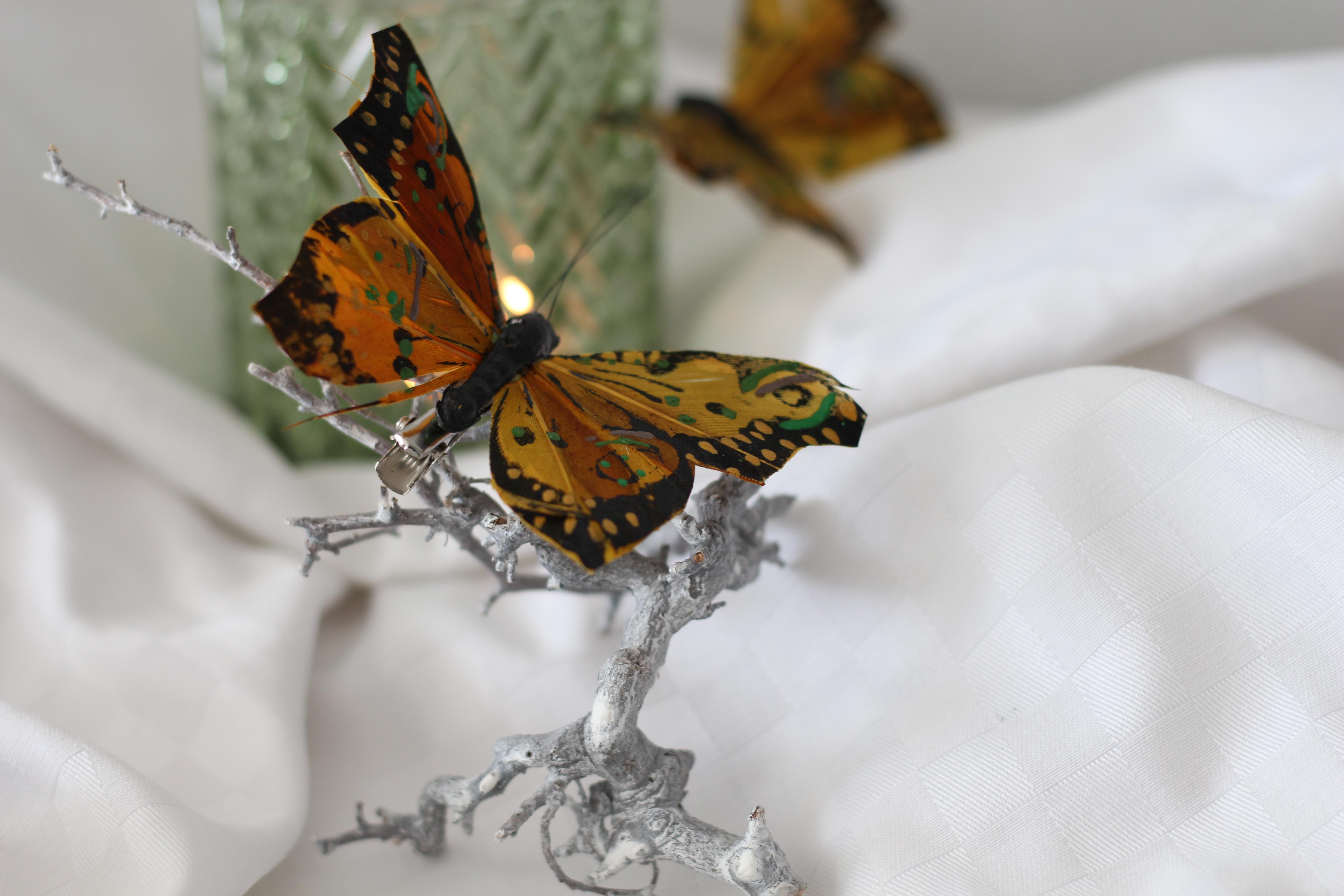 Gramhof Tischdeko Schmetterling Lindenblütensirup (3)