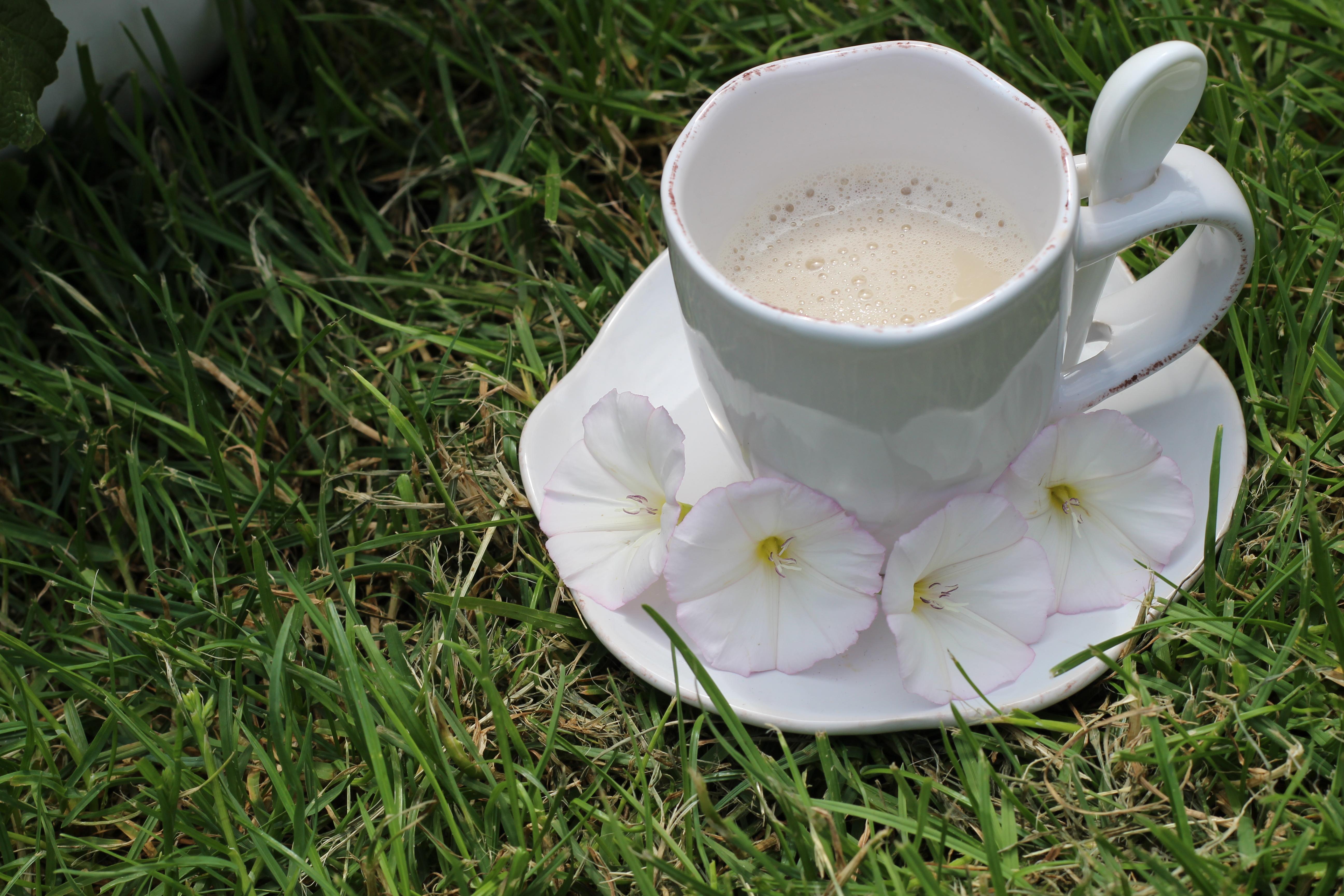 Mamas Garten Chai Latte