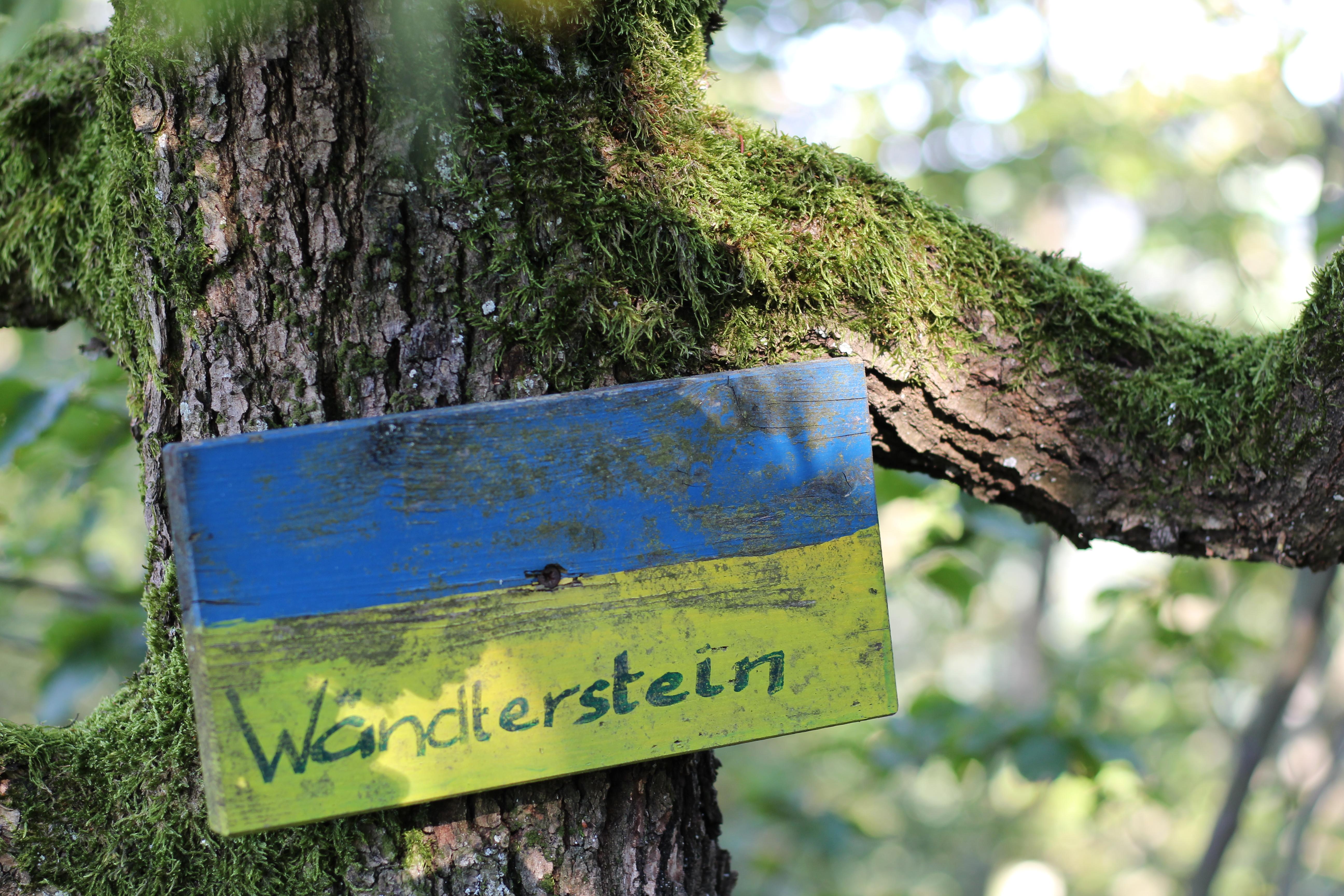 Wendtnerstein Schalenstein Neustatdl an der Donau Homespaheimat Vegan Austria Wanderlust (14)