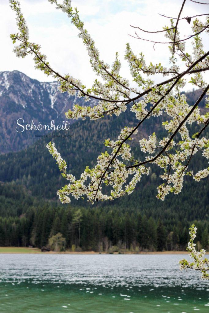 Wohlfühlen Weissensee Kärnten HomeSpa Vegan Blog Austria