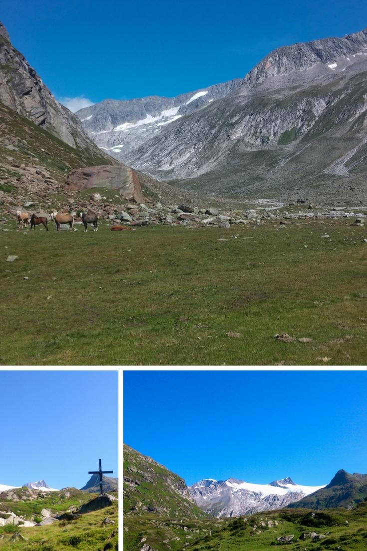Wildpferde, Leben, Osttirol, Stubnhocker, Dein Homespa