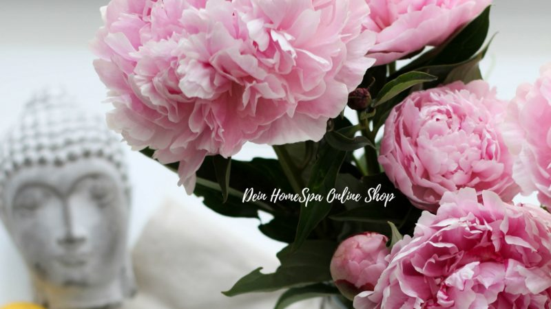 Online Shop DEIN HOMESPA, Foodblog
