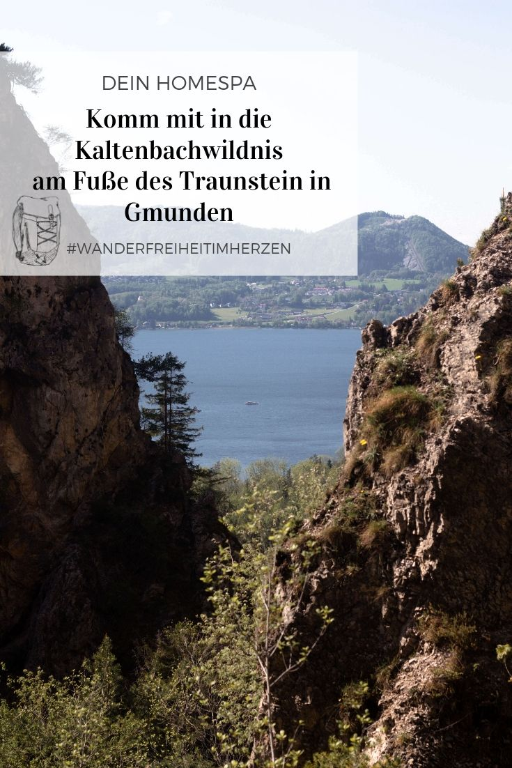 Kaltenbachwildnis-Gmunden-Traunsee- Traunstein - Wnader im Salzkammergut- Wandern in Gmunden am Traunsee- Dein Homespa - Food und Wohlfühlblog aus dem Mostviertel