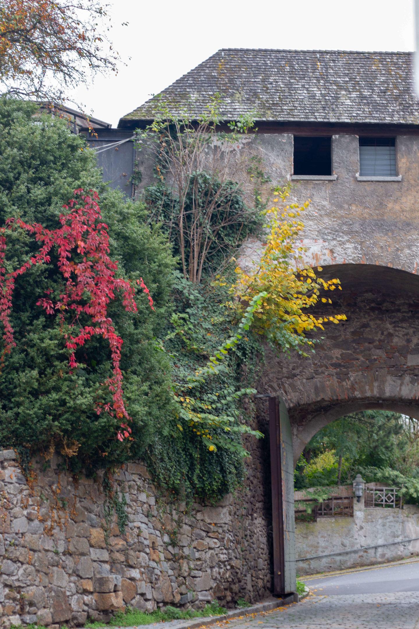 Herbstbummel in der Linzer Altstadt- Dein Homespa Blog