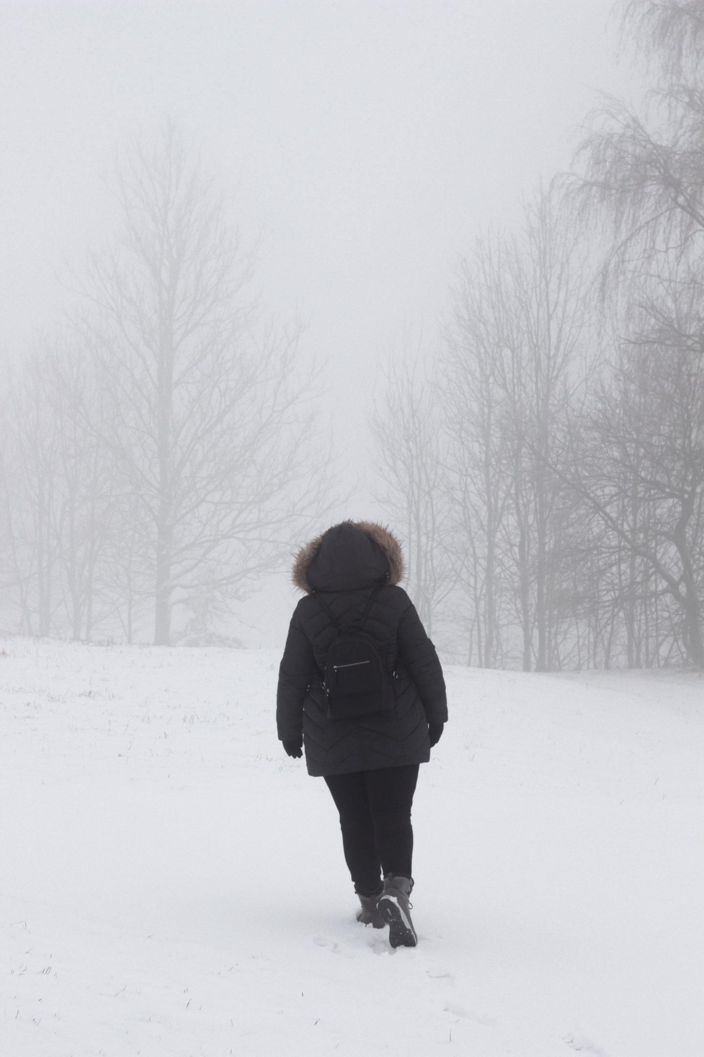 Winter-Waldbaden-Dein-Homespa-Food-Wohlfühlblog-aus-dem-Mostviertel