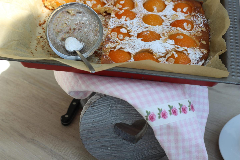 Veganer Marillenkuchen vom Blech