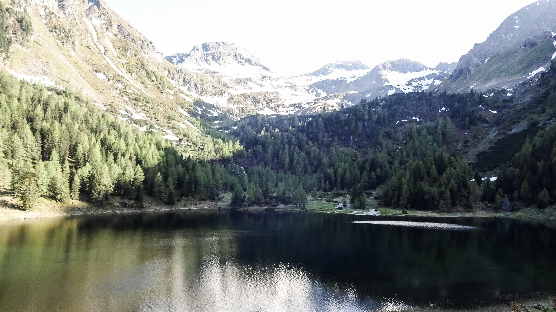 Duisitzkarsee - Ein Naturjuwel mit dem BESTEN veganen Kaiserschmarrn Österreichs!